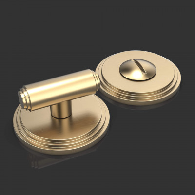 Ginglain Satin Brass Bathroom Turn and Release