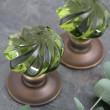 Peridot Whirl Handmade Glass Door Knobs